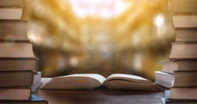 Emenda Constitucional n. 103 – o que muda além da aposentadoria?